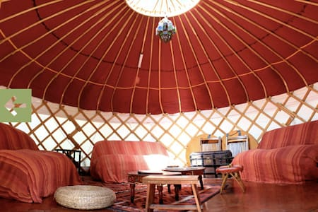 Room type: Entire home/apt Property type: Yurt Accommodates: 6 Bedrooms: 1 Bathrooms: 8+