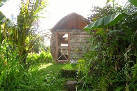 Eco-Retreat: PineapplePod Glamping - Pāhoa
