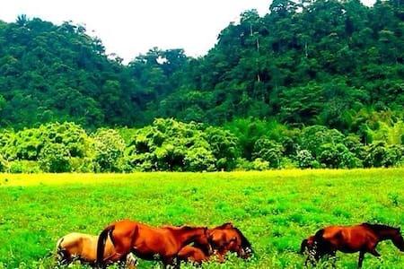 Casa en medio de Bosque Protector - Bosque Protector TANTI