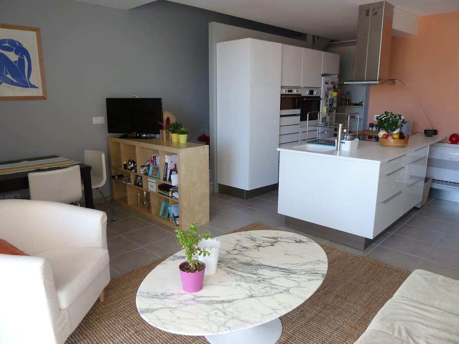 Le salon avec la cuisine ouverte / The living-room with the kitchen
