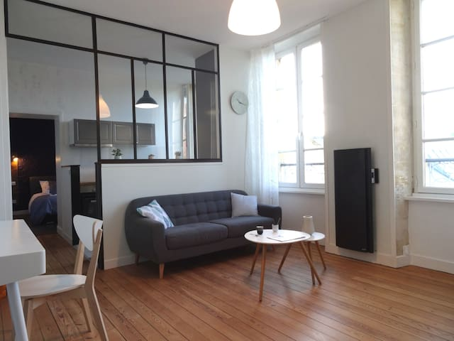Grand appartement 50 m² , désinfection renforcée.
