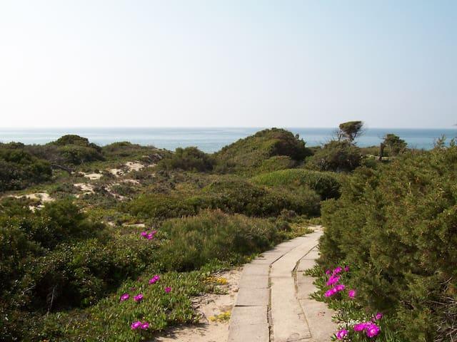 Sardinia, closer to the heaven