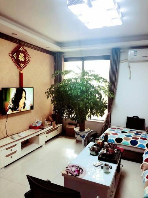 客厅里超级大一颗幸福树!