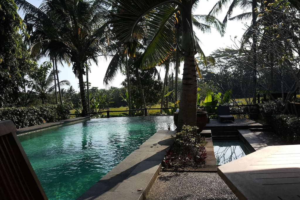 Bali Apartments For Rent