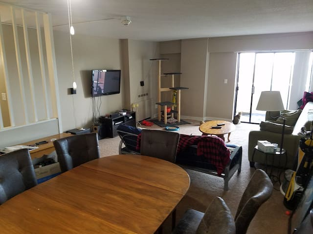 2 bed 2 bath high rise with a view in Clintonville - Columbus - Appartement