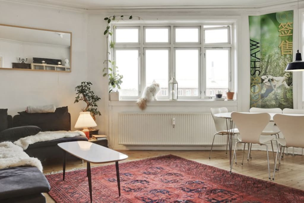 The main room with a trendy scandinavian feel
