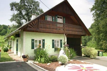 Ferienwohnung neben Weingärten - Deutschlandsberg
