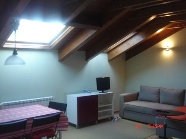 Cozy Wooden Attic Pyrenees 1room 4 guests