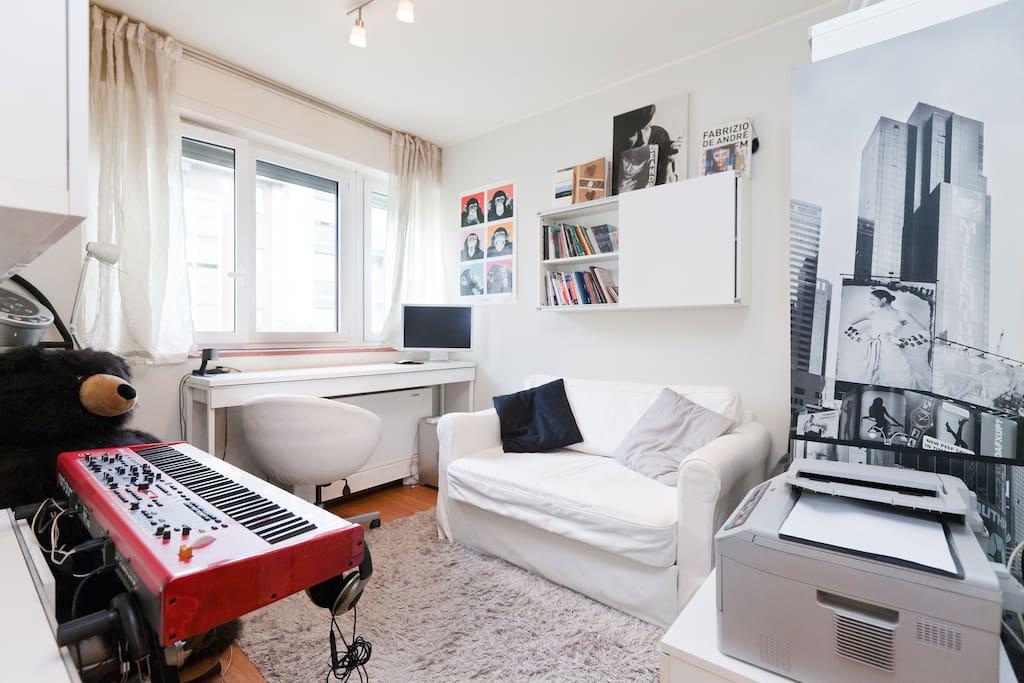 Cozy studio with convertible sofa