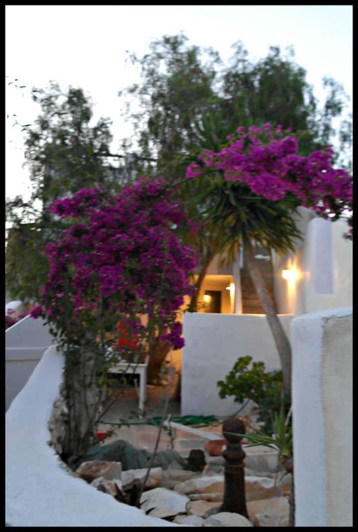 Two bedroom house in  Naousa