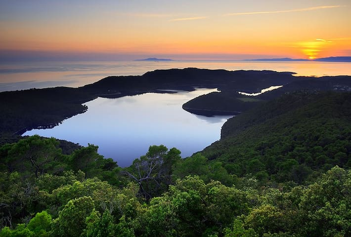 Sweet Mljet 1 - 1 room, 2 beds - Malo jezero - House
