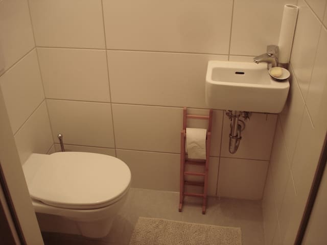 the shared toilet