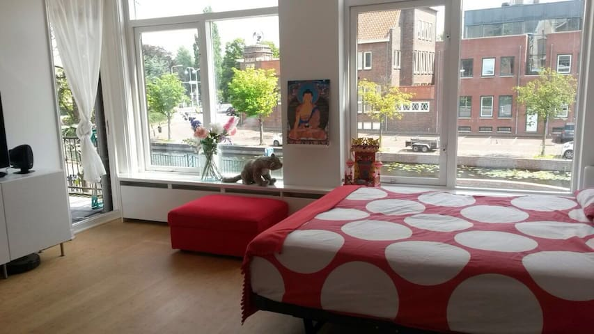 Light & bright family home, clean & clutter-free - Leiden - 獨棟