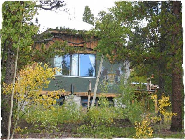 Mountain Home near Colorado resorts - 萊德維爾(Leadville) - 獨棟