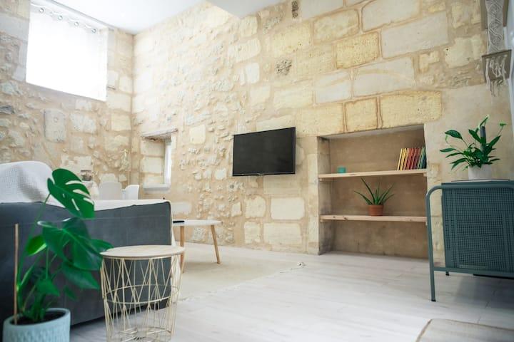 CHARMANT appartement en pierre + cour privative