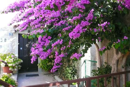 Holiday Room Bougainvillea - Mali Losinj