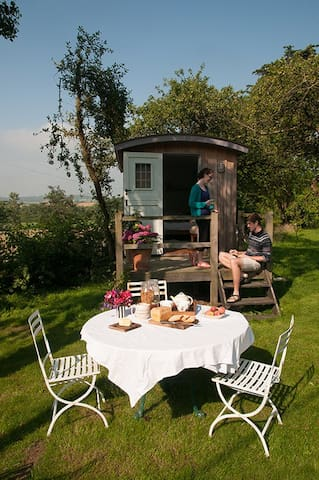 B&B in 3 shepherds huts near Bruton