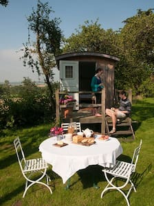 B&B in 3 shepherds huts near Bruton - Bruton - Capanna