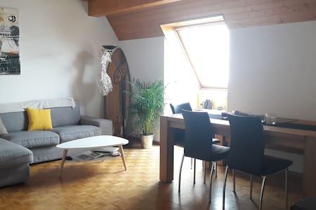 Charmant appartement au bord du lac léman - 克拉倫斯(Clarens) - 公寓