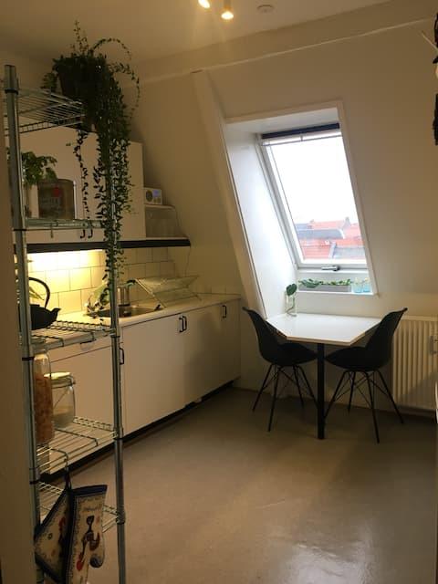 2-Zimmer-Wohnung im Zentrum von Aalborg