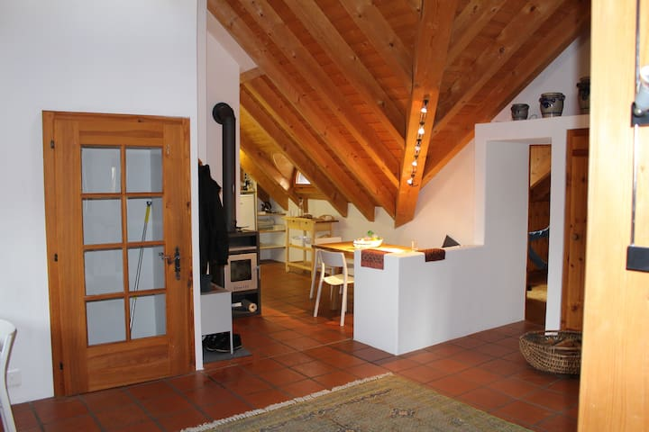 Roof Apartment - Guarda - Apartment