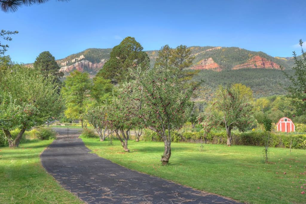 Durango Colorado vacation rental home Durango Valley Orchard Guest House valley and mountain views