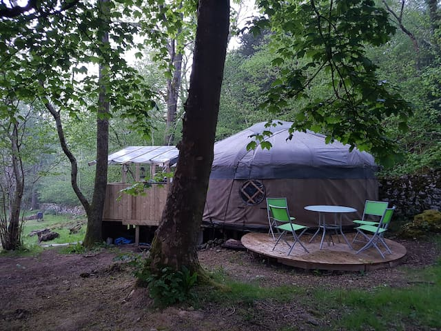 Luxurious woodland yurt with wood fired hot tub