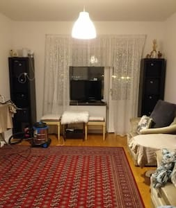 Small apartment walking distance to city center