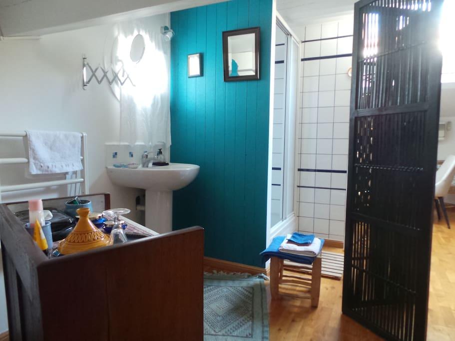 la salle de bains avec douche et lavabo