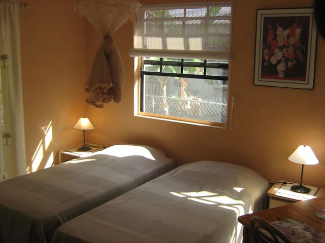 two twin size beds with mosquito net