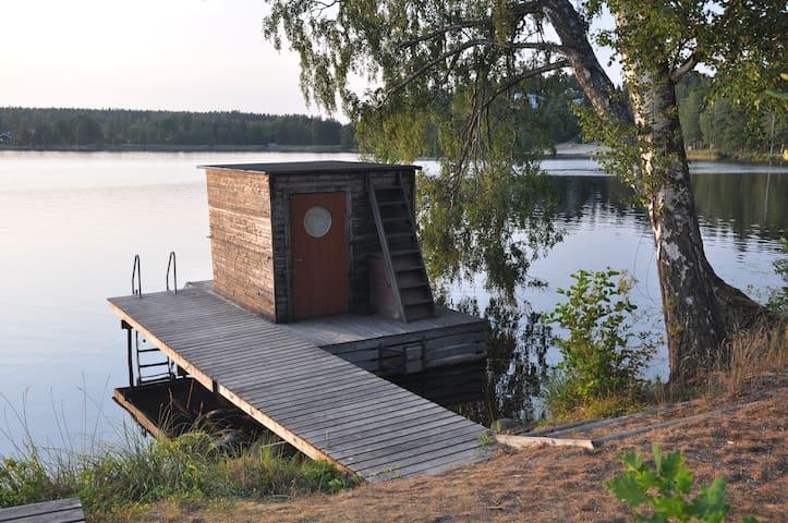 Houseboat in Borsöknasjön