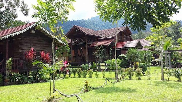 Living in the Rain Forest@Sedim Vista, Kulim Kedah