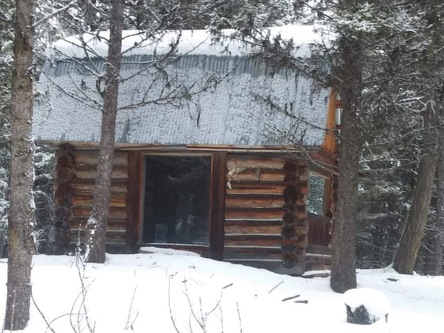 Buck Ridge Log Cabin Wild game everywhere