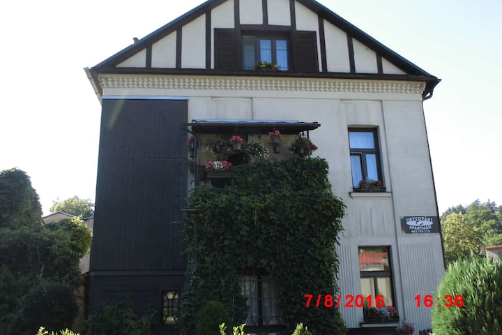 ÚTULNÝ APARTMÁ V SECESNÍ VILE - Úpice - Egen ingång
