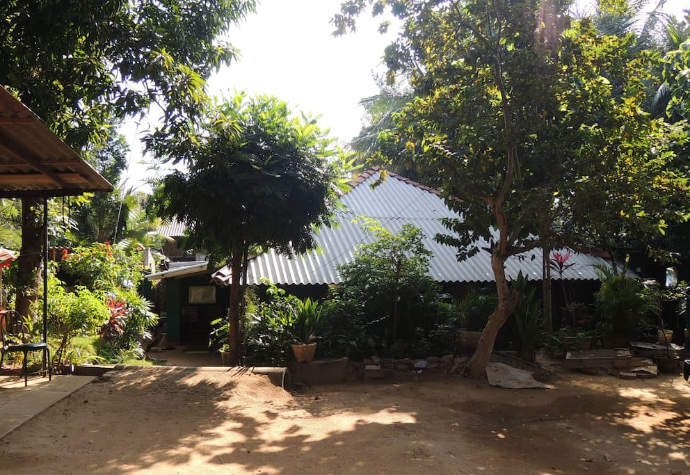 The Oasis Tourist Welfare Center is located in a quiet backyard just behind a restaurant with the same name.