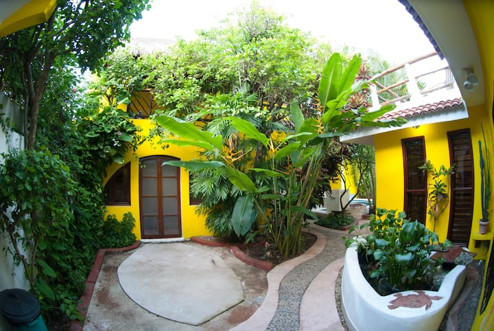 Pool House at Cozumel's Casa Darcy Bungalows