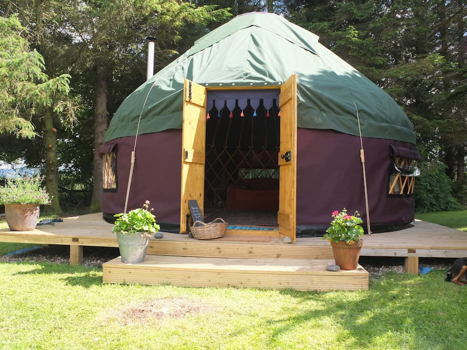 Welcome to the yurt!