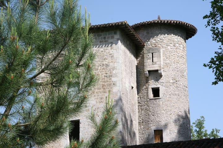 Chambres dans une tour du 13ème - Fargues-sur-Ourbise