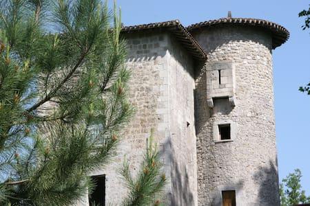 Chambres dans une tour du 13ème - Fargues-sur-Ourbise - Zamek