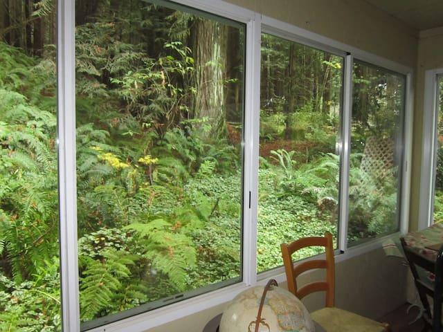 2 bdrm - Redwoods, River & Ocean - Duncans Mills - Haus