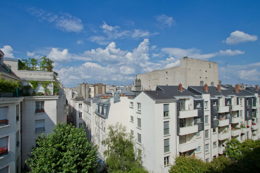 View on Paris rooftops