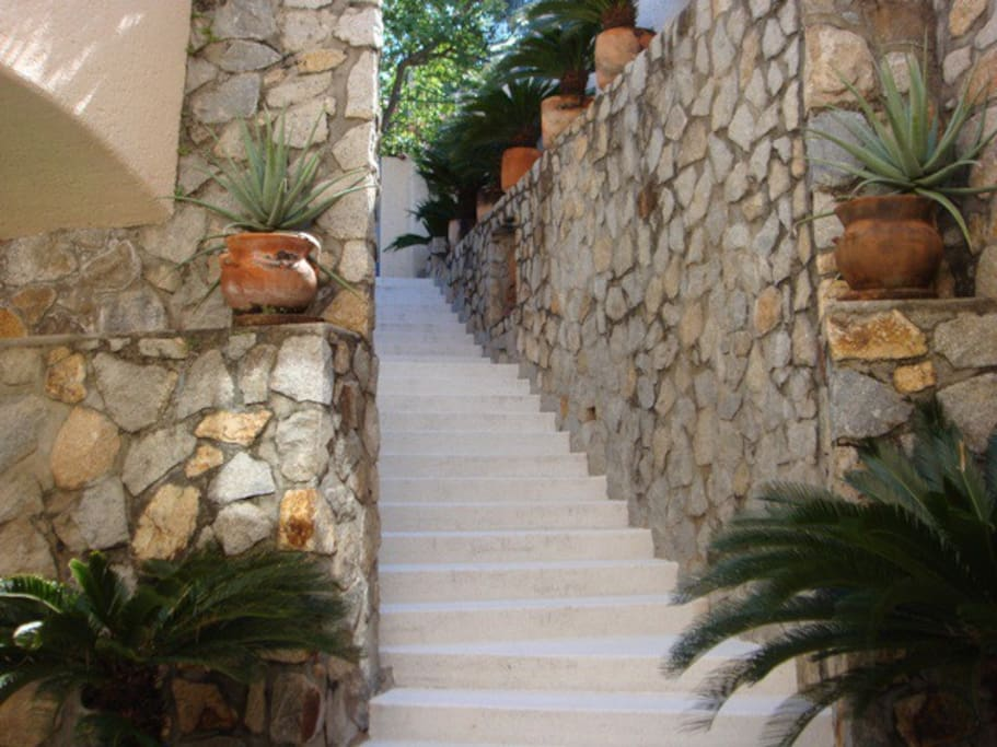 stairs to the gate and garage