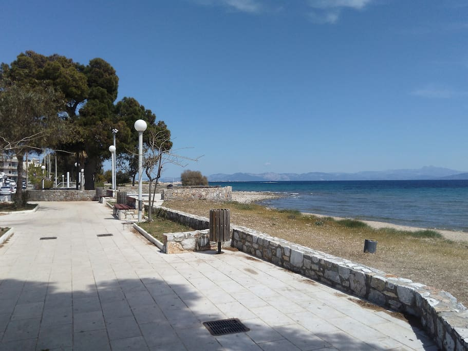 The beach is 50 meters away from the property!!