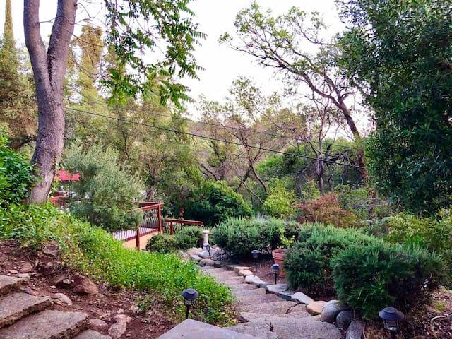 Peaceful Sonora Retreat—4 bedroom w/Fast WiFi
