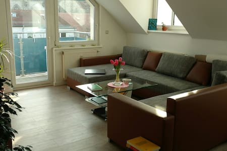 Only 5min to city center and uni - Magdeburg - Apartmen