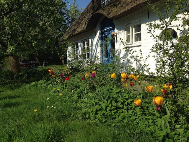 Eider Cottage (ground floor) - Süderstapel - Daire