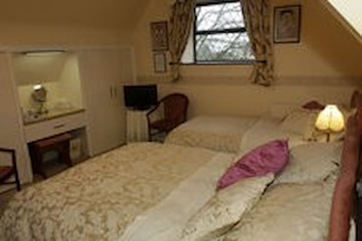 Avondoyle Upstairs Family Rm1 - Limerick - Bed & Breakfast