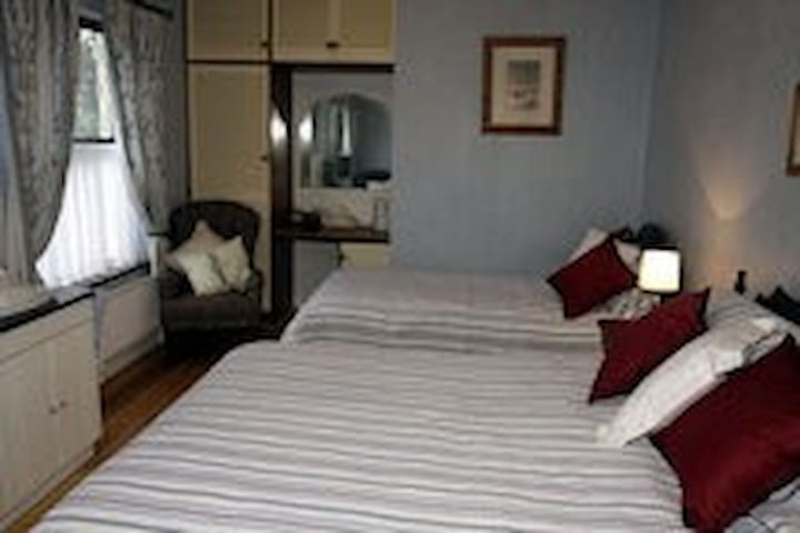 Avondoyle Downstairs Family Rm3 - Limerick - Bed & Breakfast