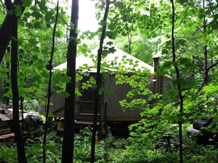 24' yurt-stay
