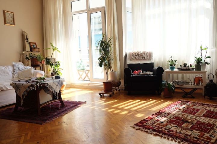 Living room from the entrance-2